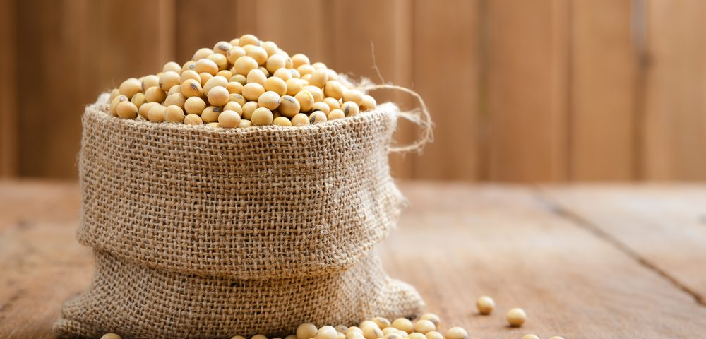Soy Has a Protective Effect in Certain Breast Cancer Patients, Study Shows